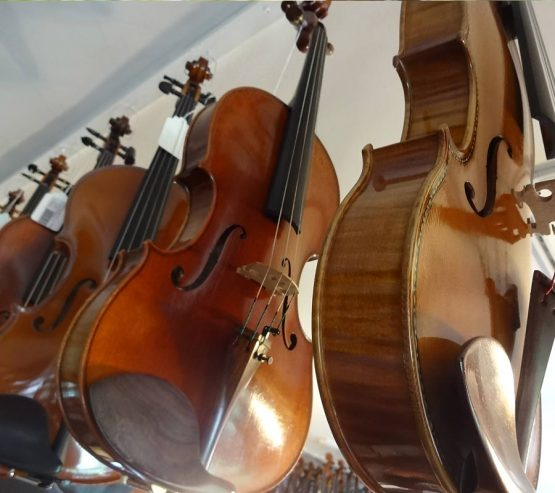 Austins-Violin-Shop-Rent-Viola