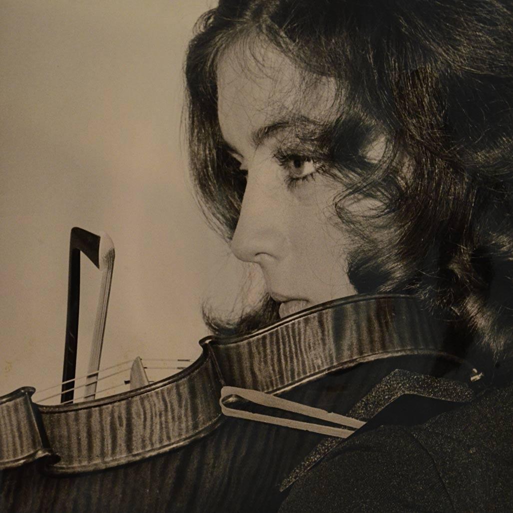 Patricia Austins Violin Shop